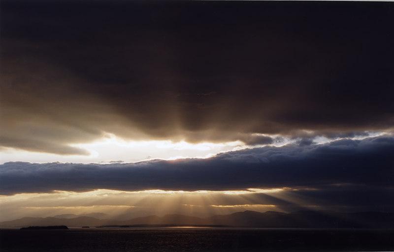 Into the light.jpg