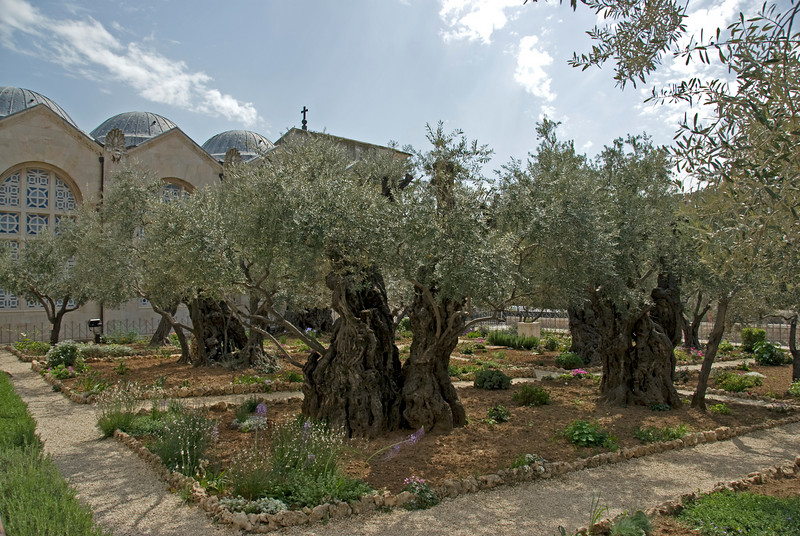 The Garden Tomb in Jerusalem, Israel