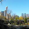 Central Park Zoo View