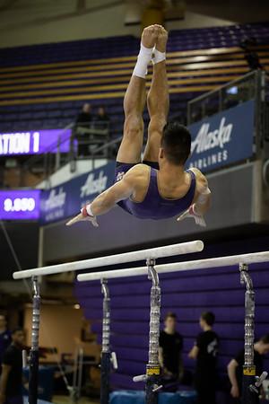 2019-03-10 UW Mens Gymnastics