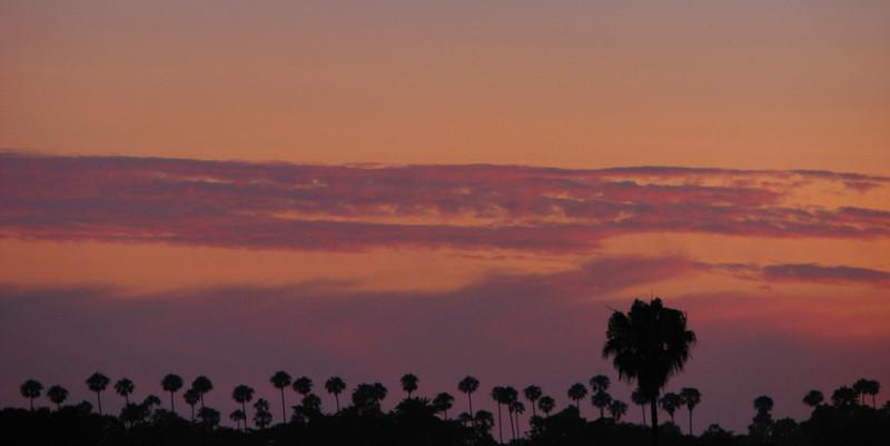 Night sky above Santa Monica