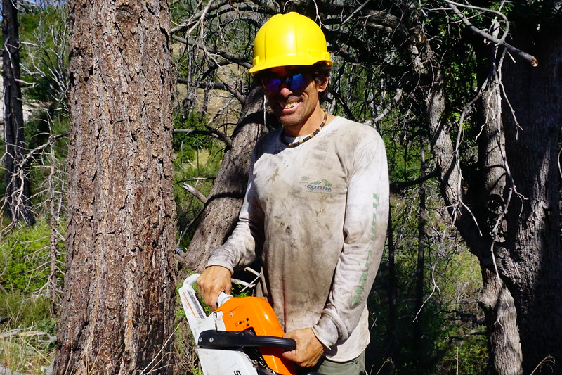 20170430026-Vetter Chainsaw Trailwork.JPG