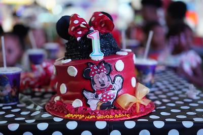Allena Birthday Party