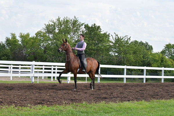 28.  Academy Equitation WTC, Adult