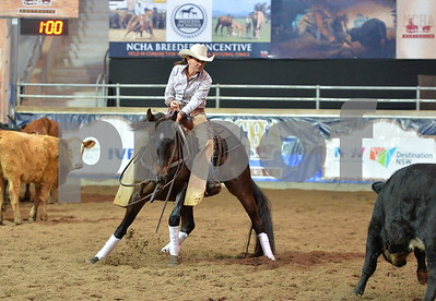 LIMITED NP FUTURITY FINAL AND PRESENTATION
