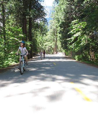 2011 Yosemite NP