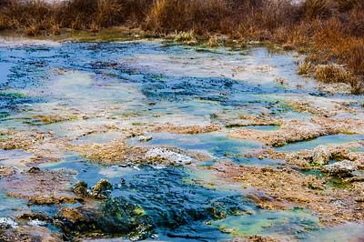 Yellowstone February 2015