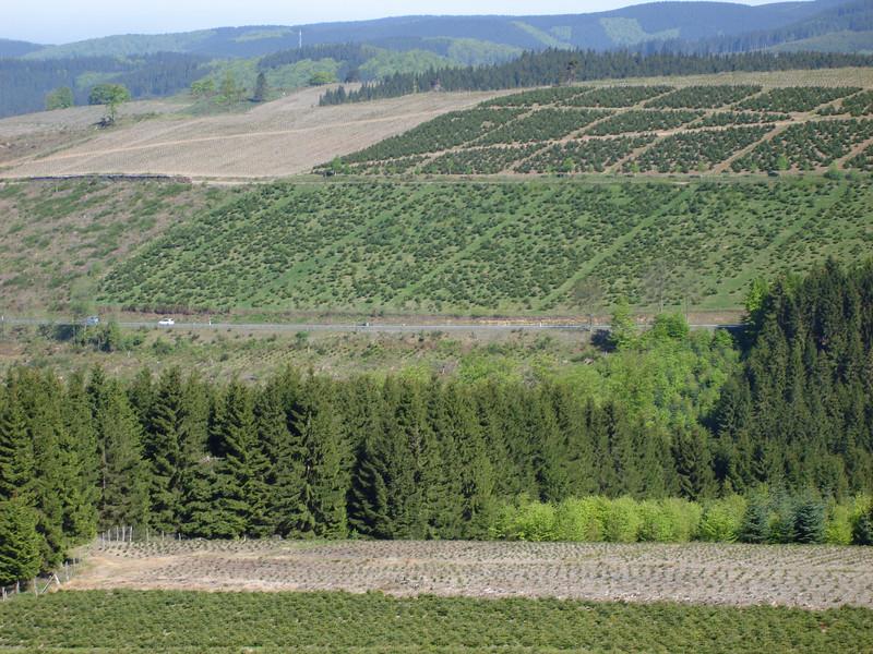 Lennestadt 2010 123.JPG