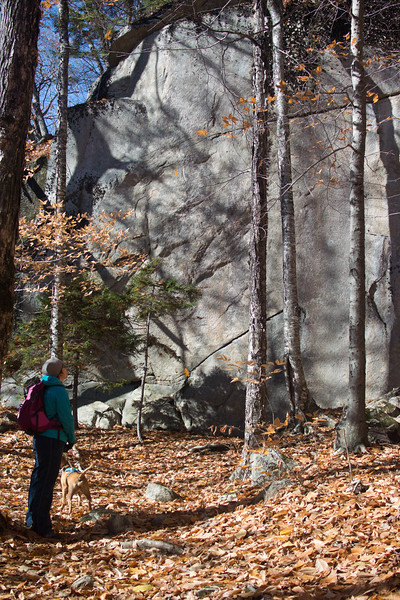 Fall 2016 Hike