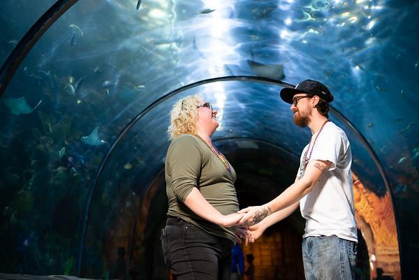 Sample - Aquarium
