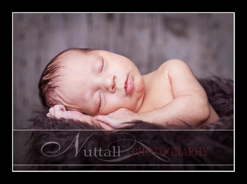 Noah Newborn 57.jpg