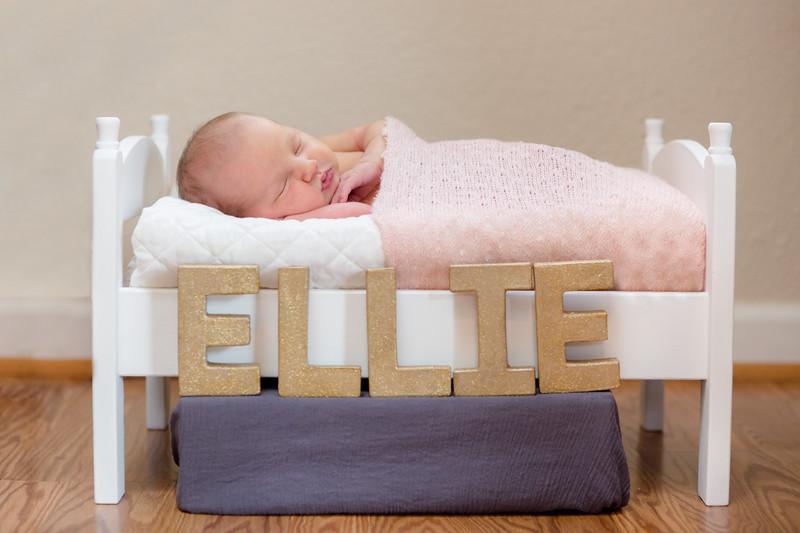 Baby Ellie-13.jpg