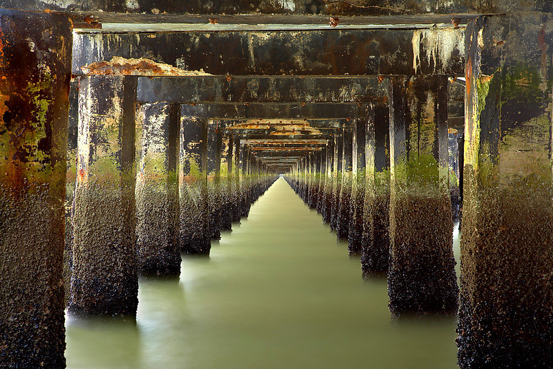 This view underneath the Berkeley pier was taken at low tide so that the mussels and dark seaweed can be seen. Waves kept splashing salt spray onto the filters. So it took about 20 minutes of trying to get the best image.  And I had to wait about 1 month for overall light and tidal conditions to be right.