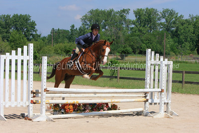 Region 13 Half Arabian Hunter Over Fences