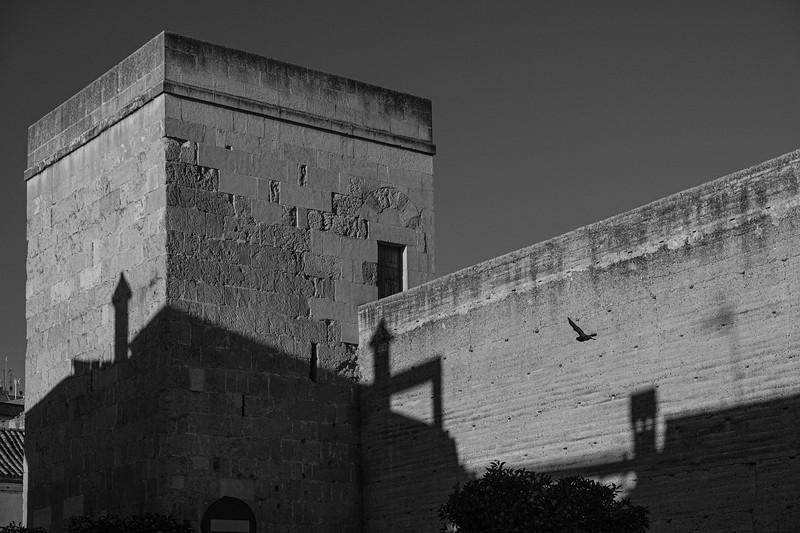 Andalucia-191118-380.jpg