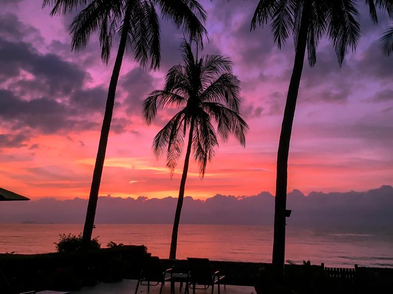 Tropical palm tree sunrise seascape. Thailand.