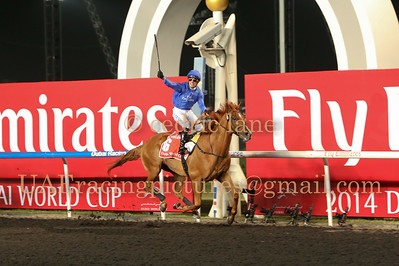 Dubai World Cup 29 March 2014