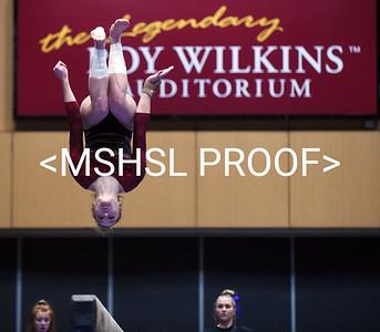 Gymnastics Class AA 19-20