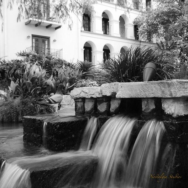San Antonio with a Yashica-D-13.jpg