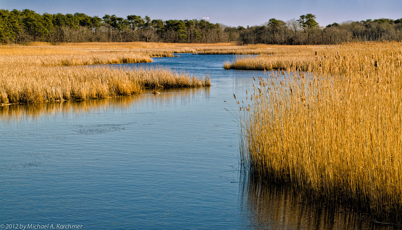 Herring River in Winter, Bell's Neck (Harwich), 2012 [Michael A. Karchmer]