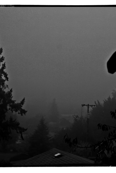 morning fog #5 bw 2019