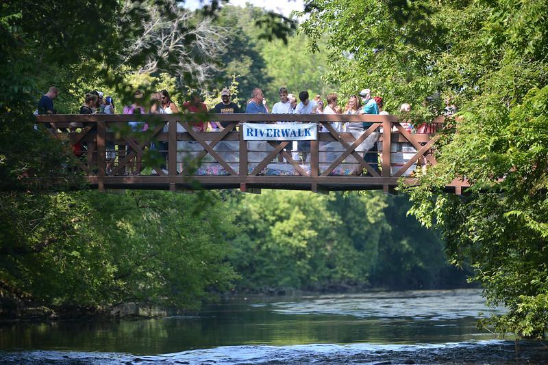 Riverwalk Duck Race 20162016081692-4.jpg