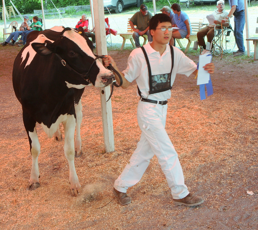 . Zachary vanLieshout leaves the show ring with a blue ribbon in the Milking Junior 3year old class  at the Boonville Oneida County Fair on Tuesday, July 22, 2014 in Boonville. the fair runs through Sunday, July 27, 2014.  JOHN HAEGER-ONEIDA DAILY DISPATCH @ONEIDAPHOTO ON TWITTER