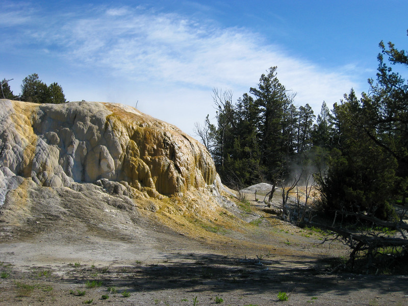 Upper Terrace at Mammoth Hot Springs