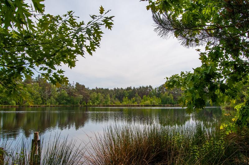 Nationaal Park Hoge Kempen - Duinengordel, omgeving Donderslag 30.jpg