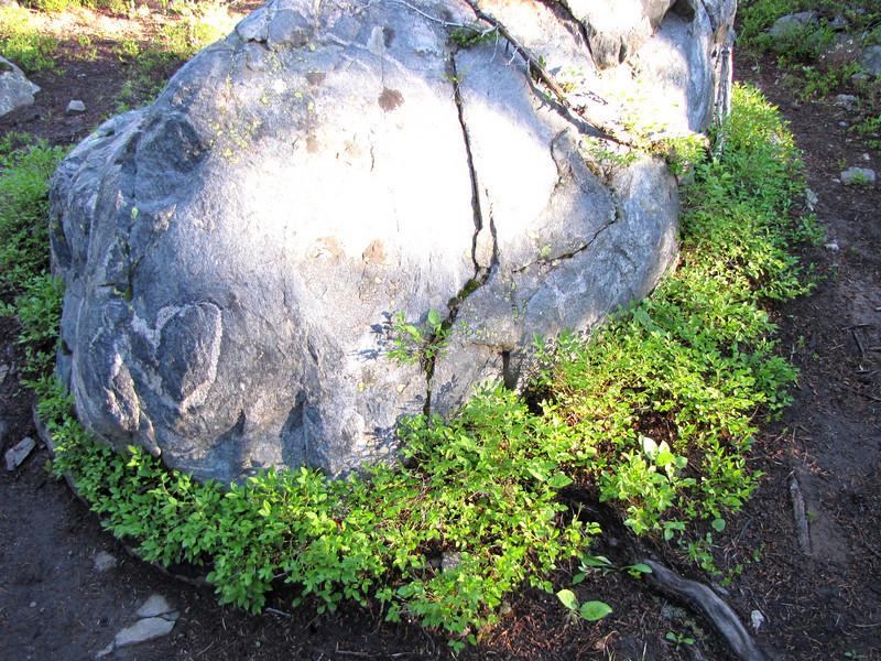 Mount of the Holy Cross 7-12-2010 056.jpg