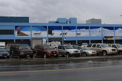 Alaska 2008 -  aneb vyprava za spoluzakem Maskem