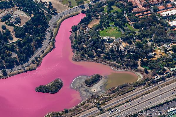 The Andree Clark Bird Refuge is Pink