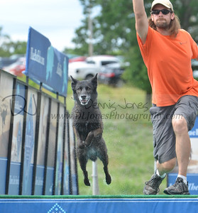 Dock Dogs 2017 at Dog Days