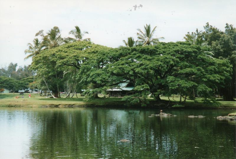199806-hawaii-10241.jpg