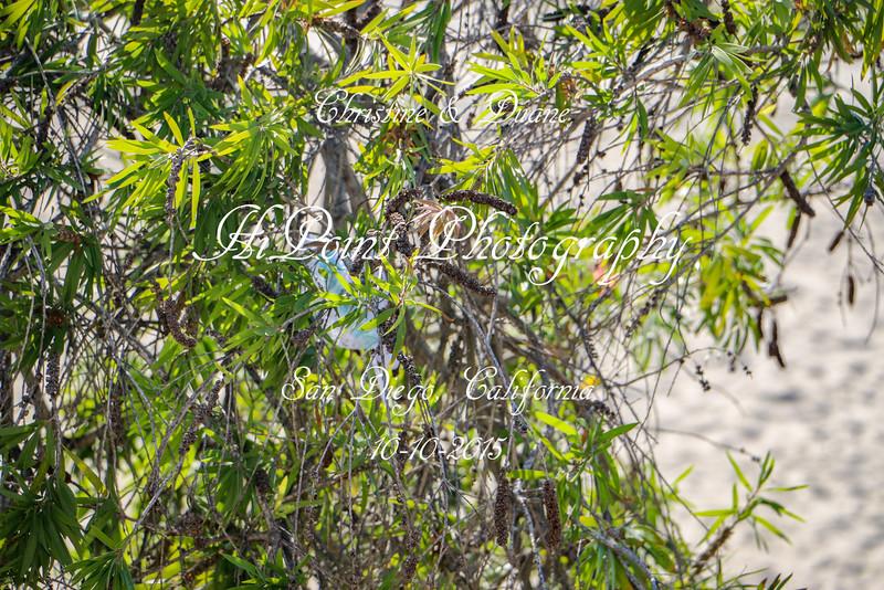 HiPointPhotography-5699.jpg