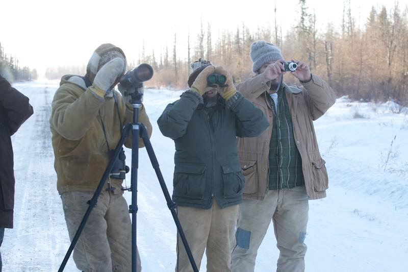 birders looking at lifer Great Gray Owl McDavitt Road Sax-Zim Bog MN IMG_1353.jpg
