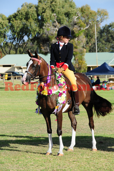 Swan View Ag Show