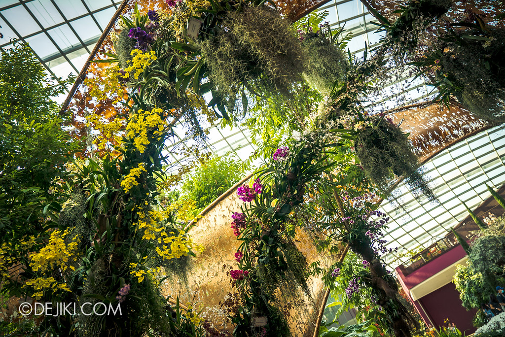 Gardens by the Bay Flower Dome - Orchid Extravaganza Floral Display 2017 / Chrysalis inside