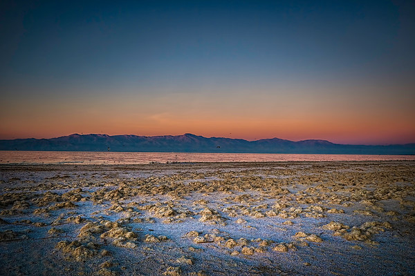 THE SALTON SEA | CA