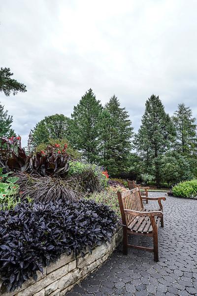 a 8 27 Arboretum-11.JPG