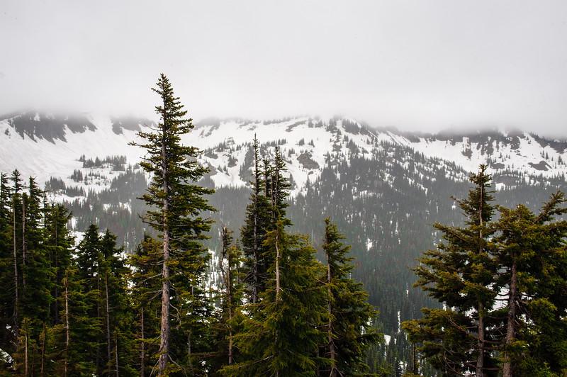 20110714 Mt Ranier 009.jpg