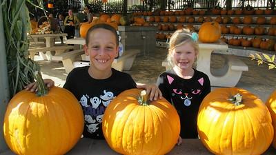 LCE Helps Pumpkins Find a Good Home