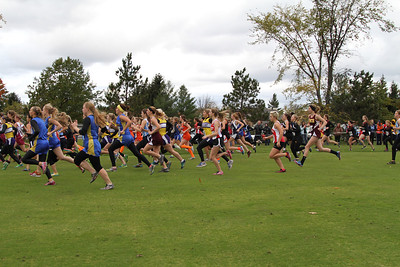 XC Regionals Start Line Division 4 Girls Grand Traverse Resort