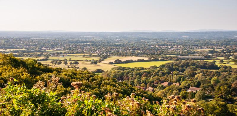 Sussex agricultural landscape