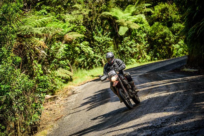2018 KTM New Zealand Adventure Rallye - Northland (756).jpg