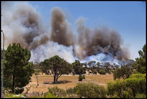 Kensington Bushland Fire 2016