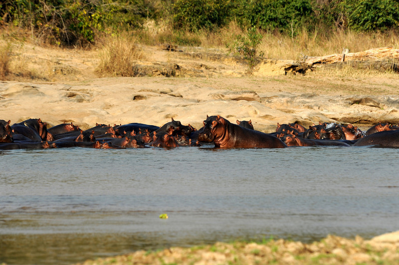 Africa 2010-008.JPG