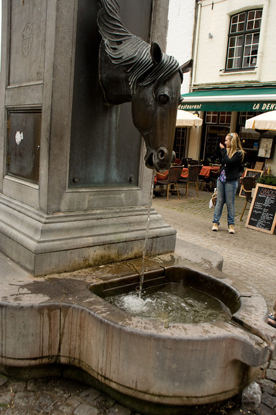 Bruges. And this is where the carriage horses can get a drink.