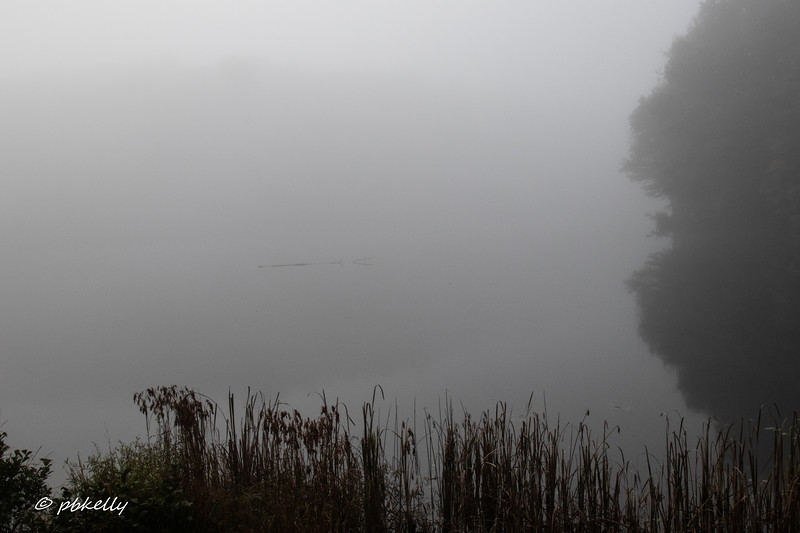 100718.  Next morning the weather had cooled and the fog had moved in. This was Long Lake.