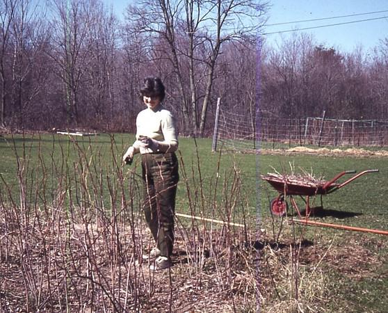 Mom's 90th BD pics 045.jpg